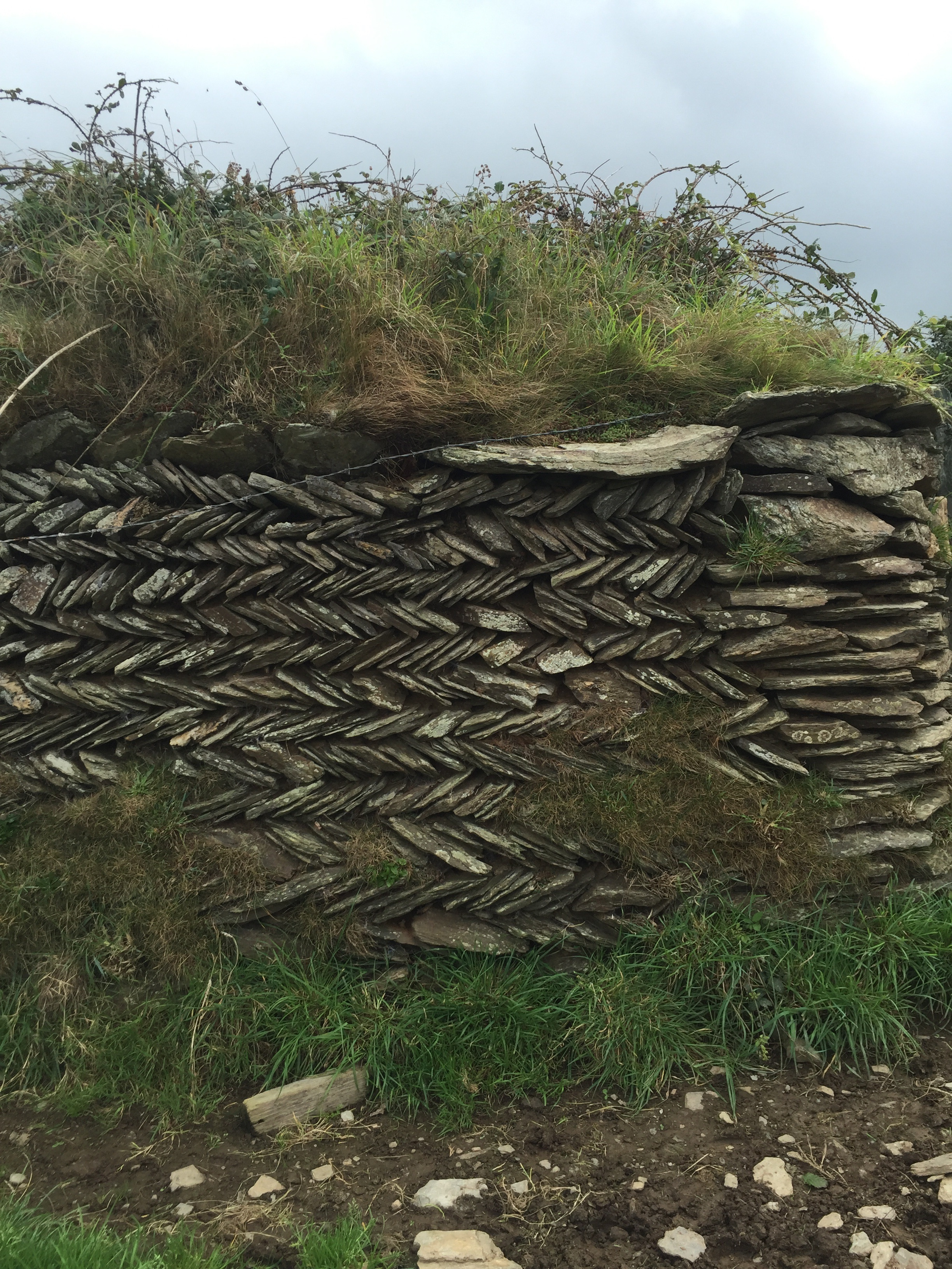Bude stone walls