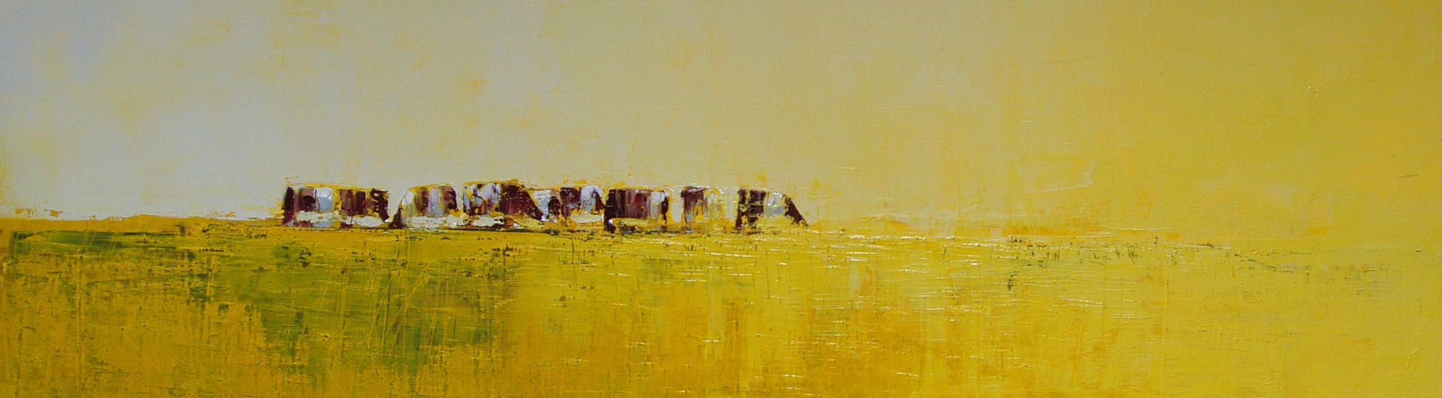 P57_vaches dans le jauneII.jpg