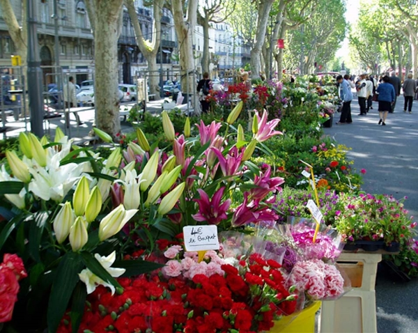 You can almost smell the flowers at this market in Paris.