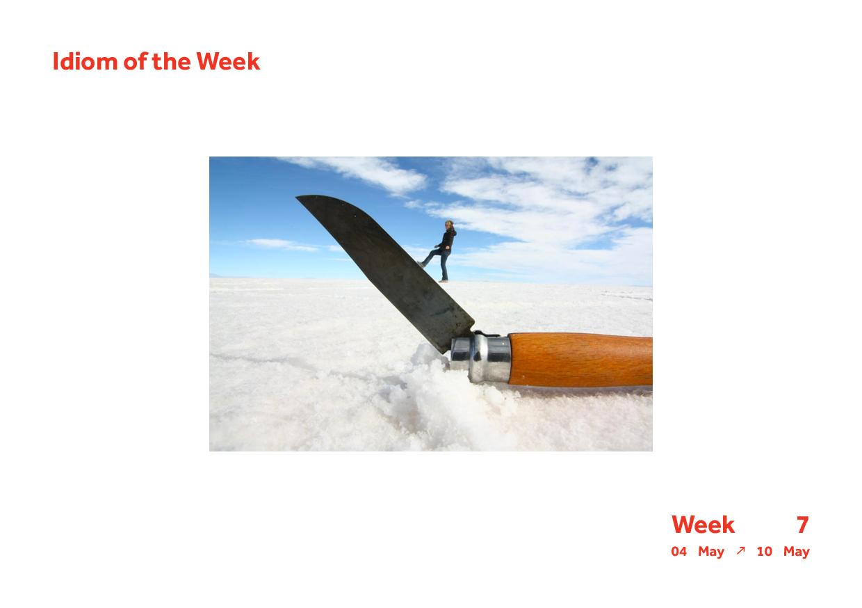 Week 7 Idiom14.jpg