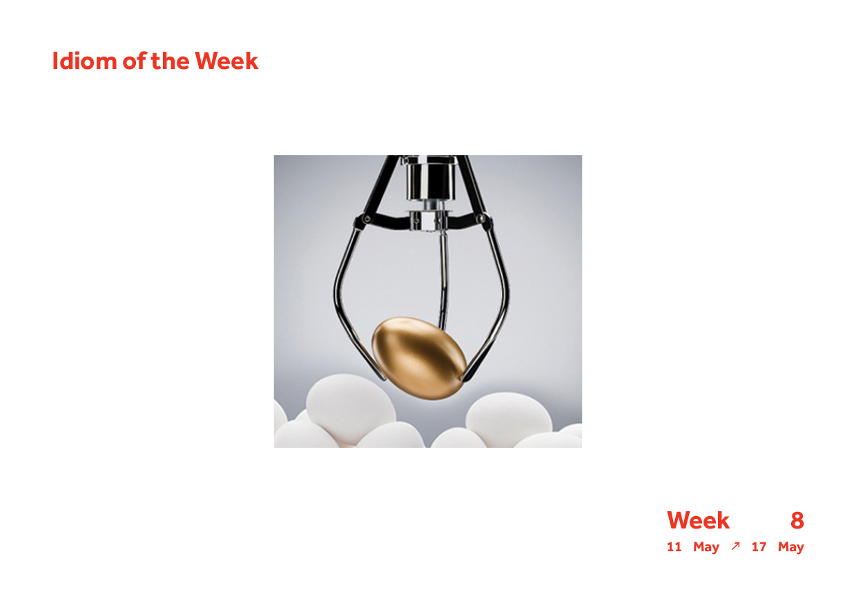 Week 8 Idiom8.jpg