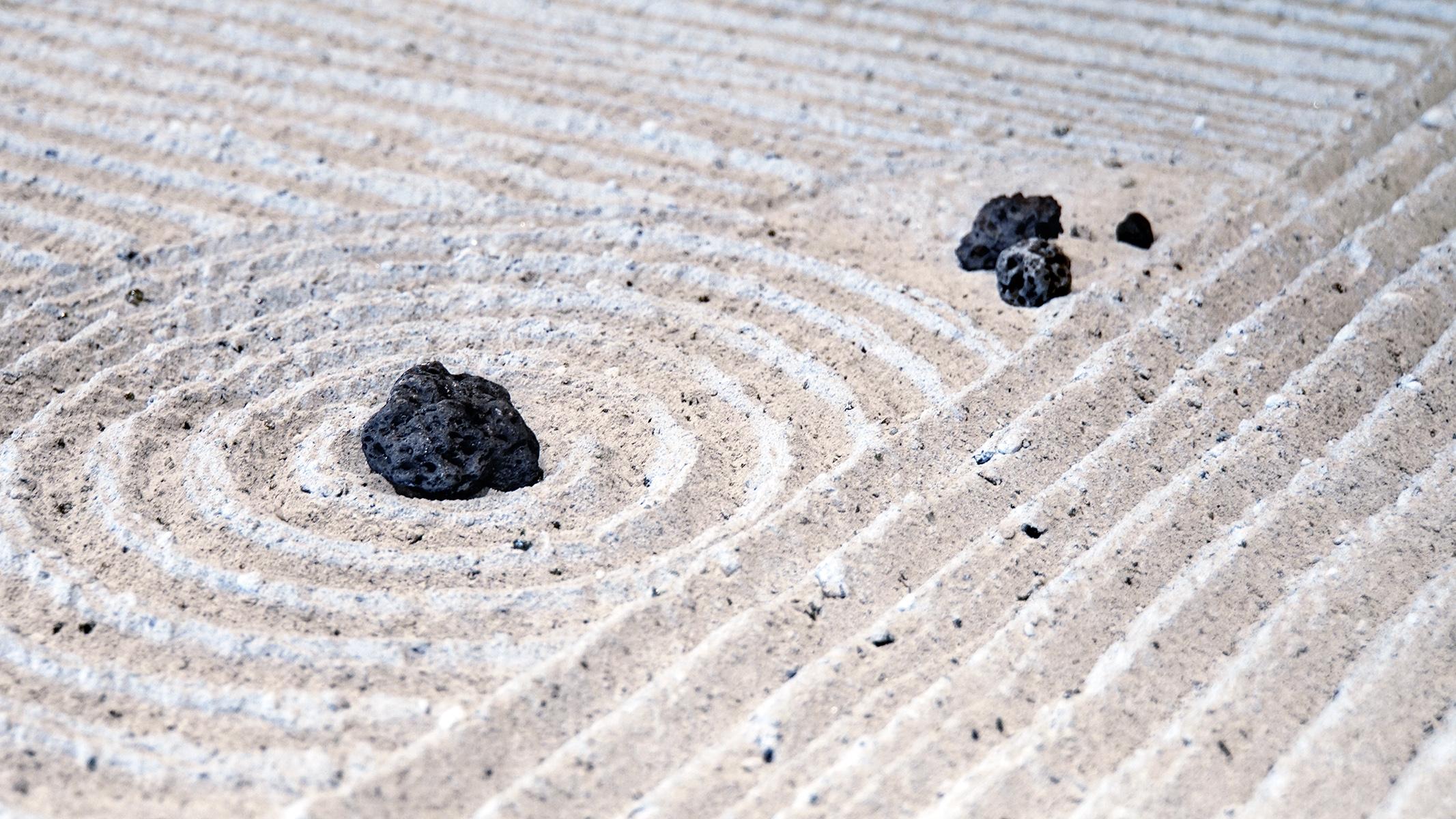 lunar_rock_garden_detail_1_l.jpg