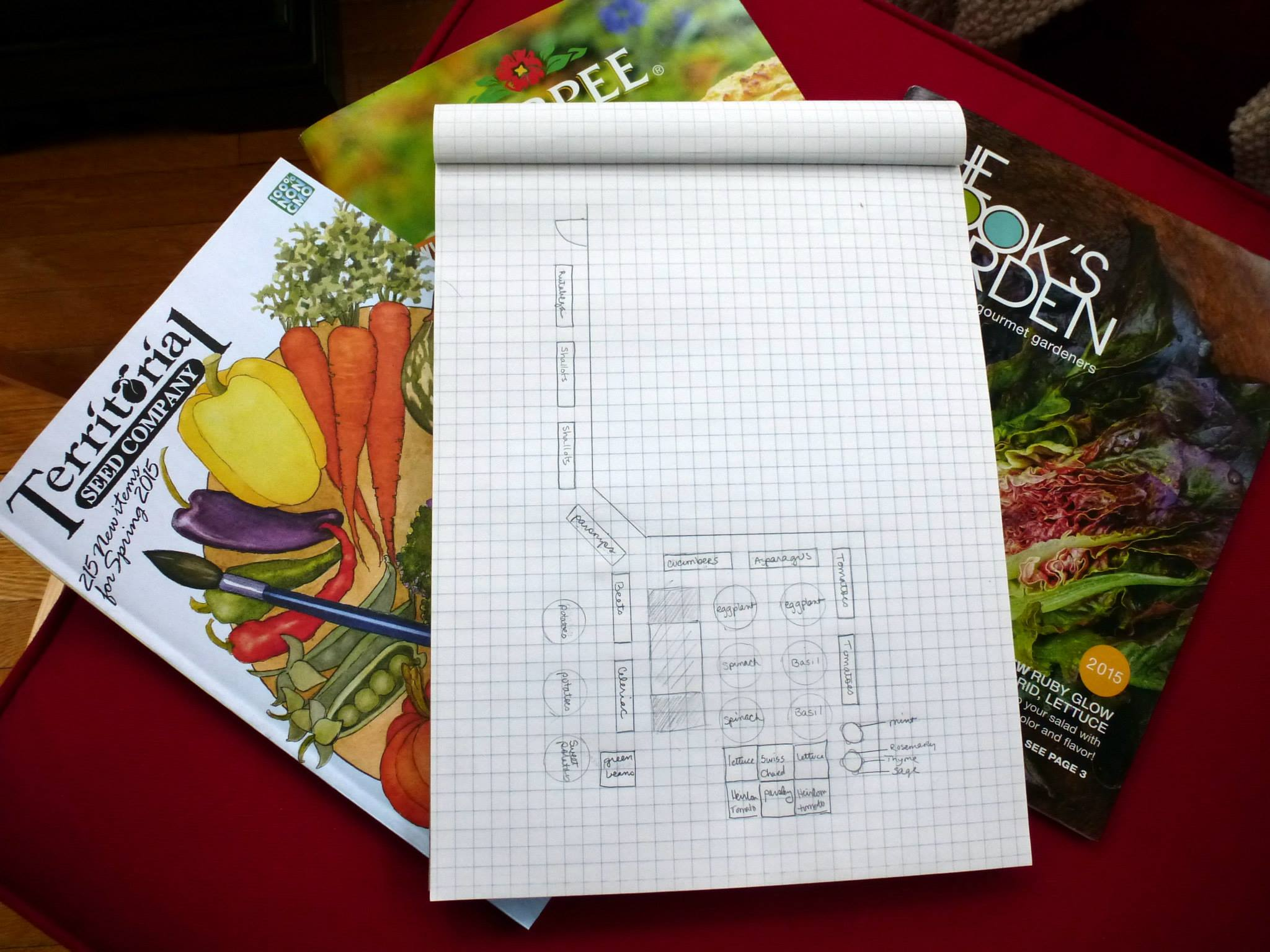 Get started planning in winter. This was my January plan...which of course, changed by the time I planted, but it was a great way to start.