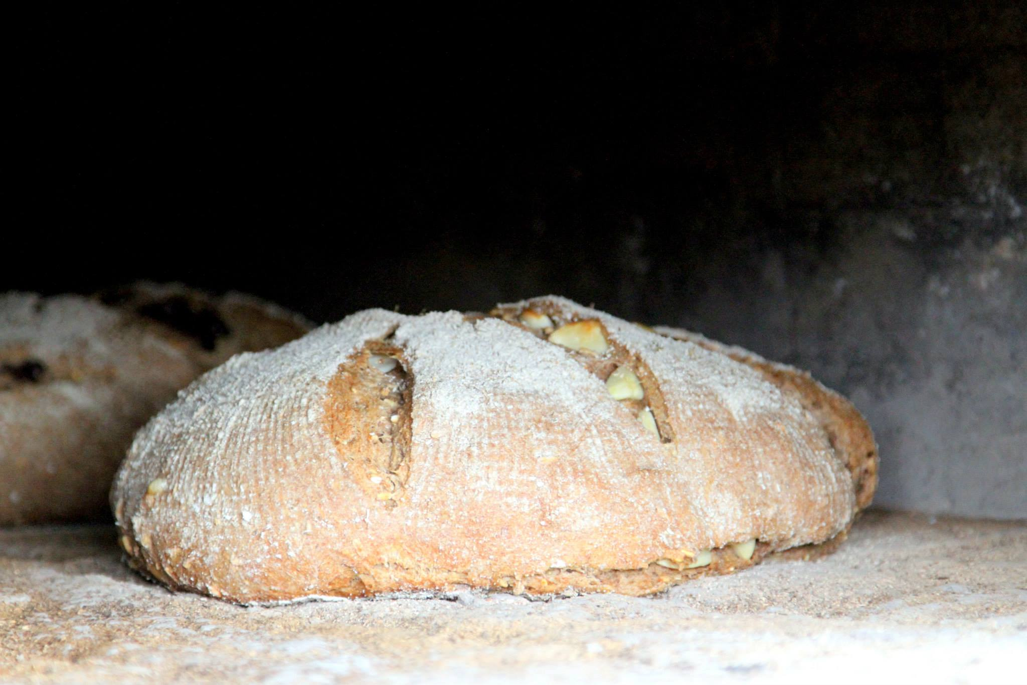 Bread as it was baking in the wood-fired oven.