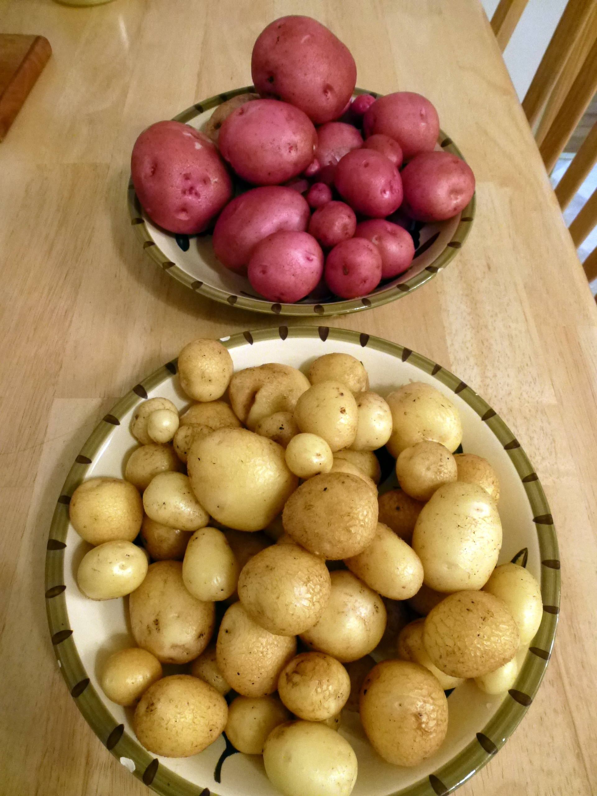 My almost 7 lbs of potatoes in 2014