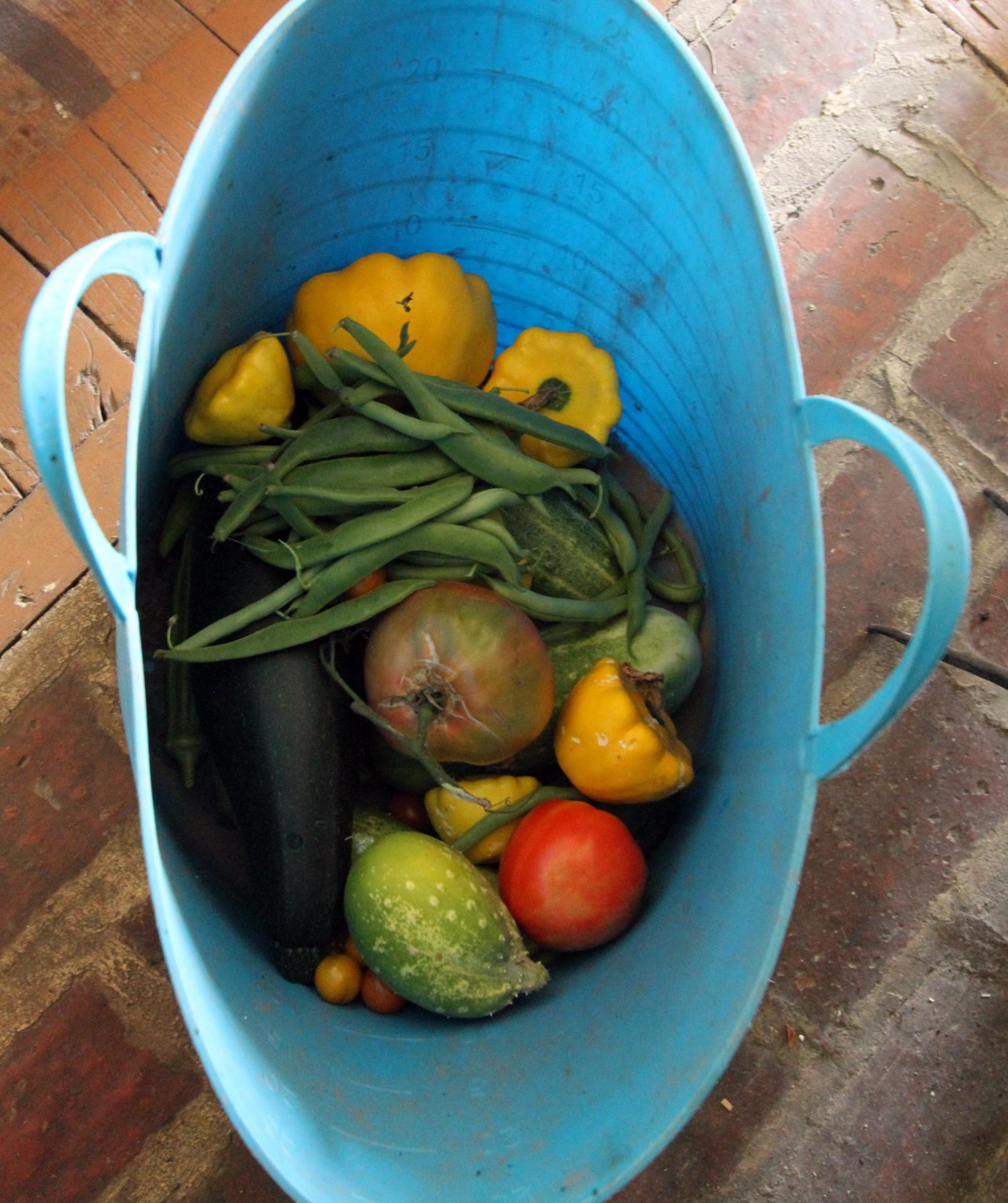 Fresh Garden Veggies for The Farm Cooking School
