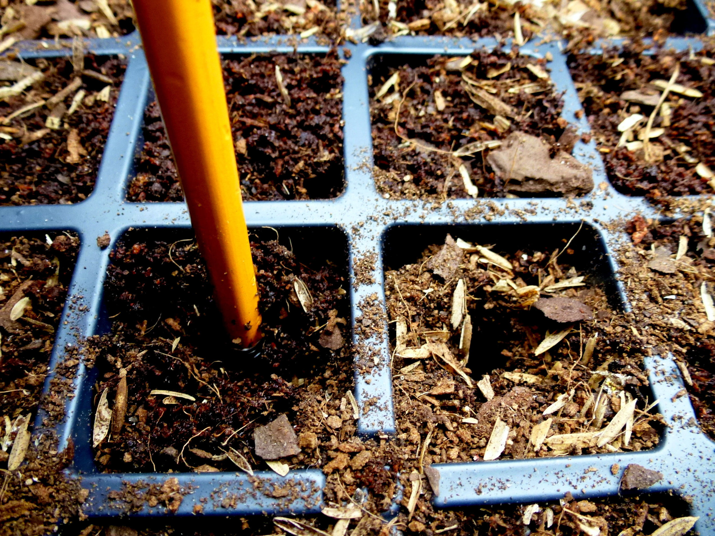 Use a pencil for clean planting holes