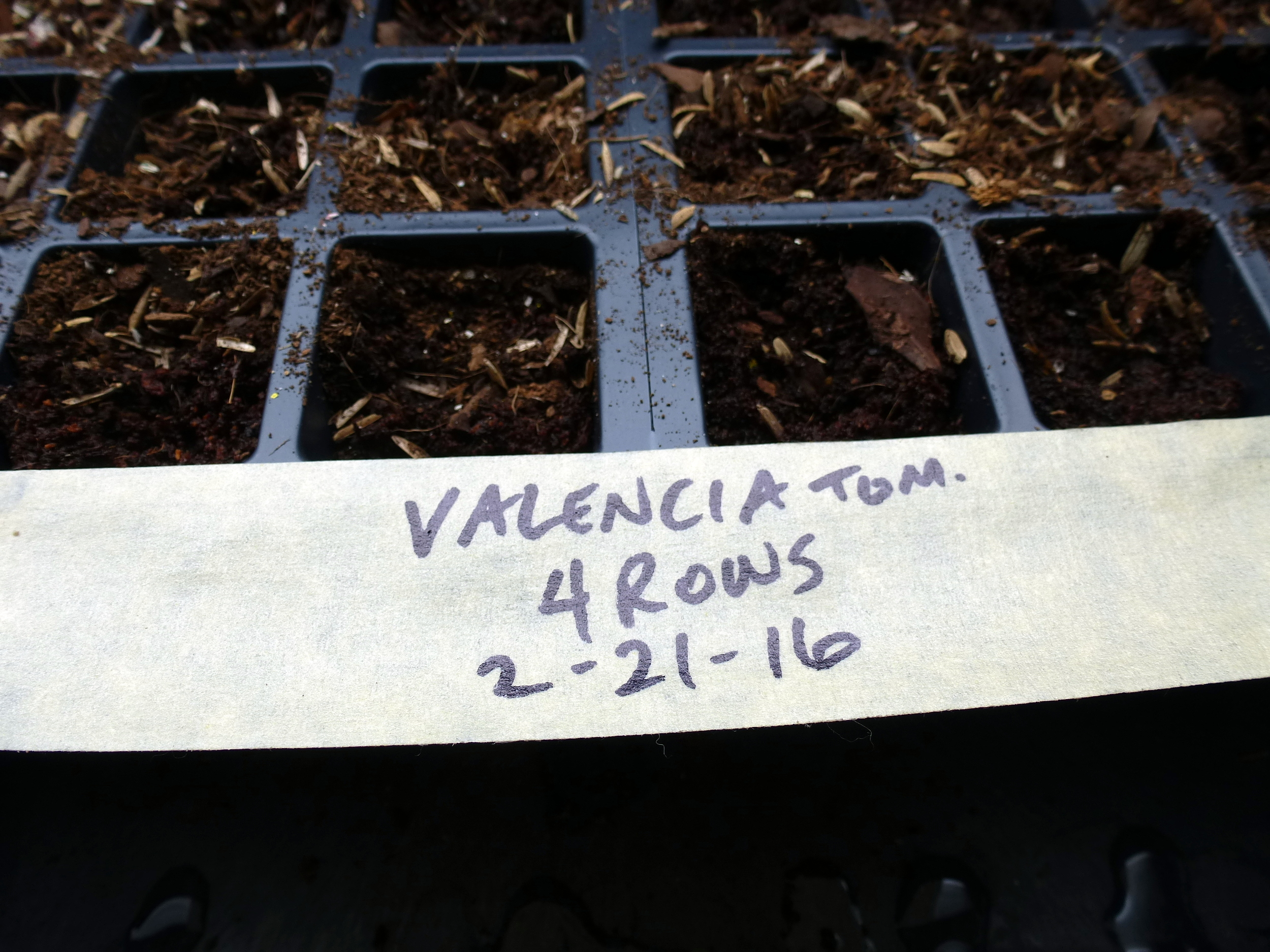 Simple labels at the time of planting can alleviate confusion later