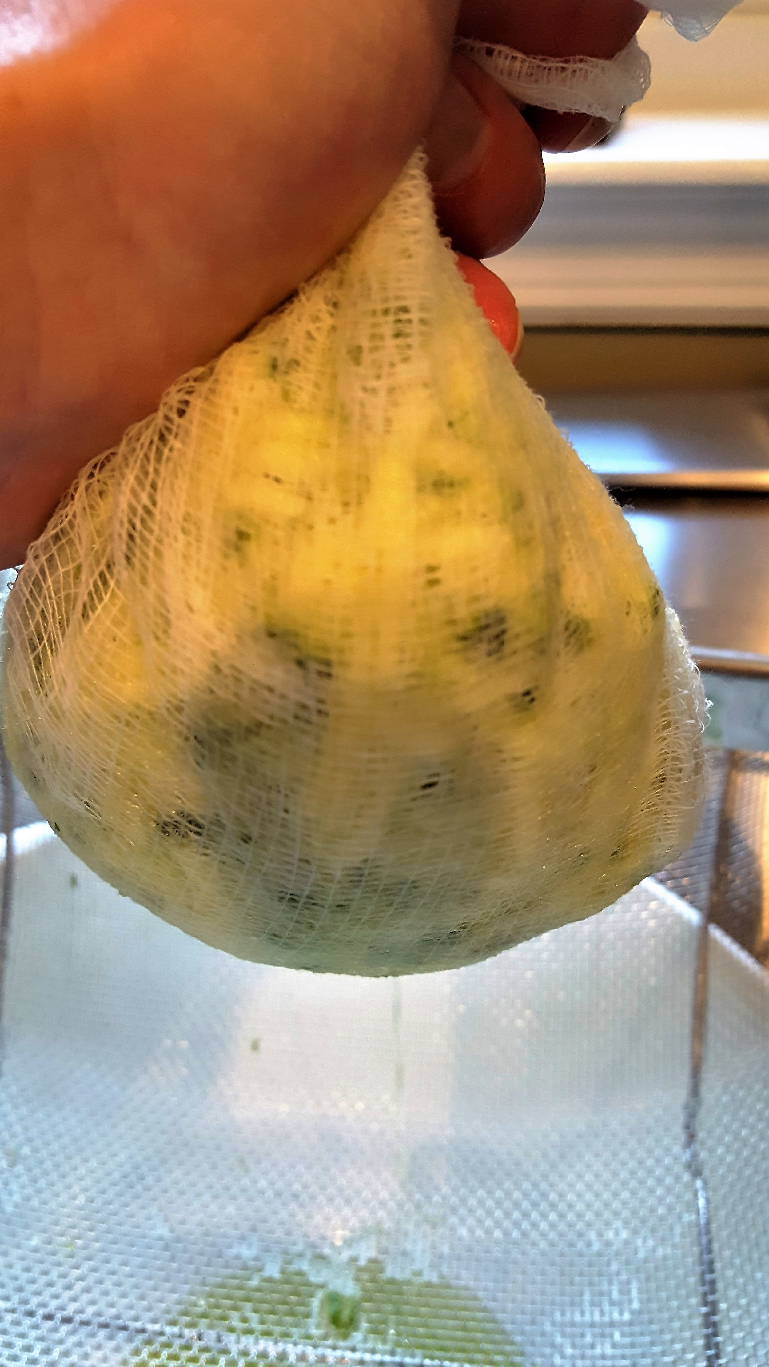 Wrap zucchini in cheese cloth and squeeze.