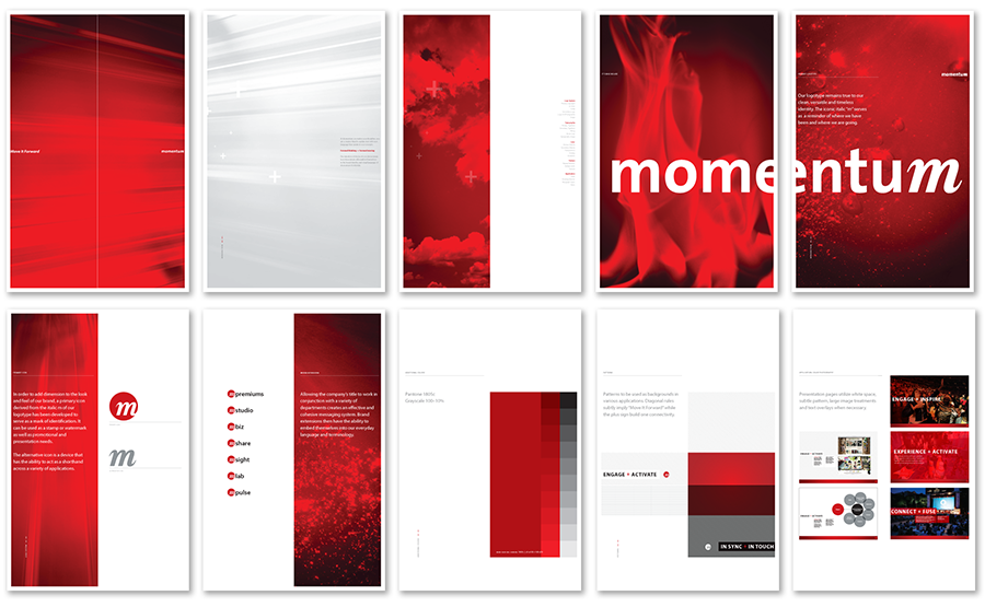 Momentum Worldwide Graphic Standards for one month.