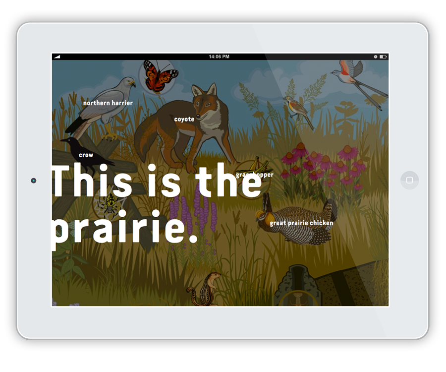 Utilizing technology was not part of our initial scope, but we did prototype a few examples of how teachers could leverage learning opportunities beyond the mobile unit. We also created sounds for three distinct biomes. Click on the link below to hear the sounds of the Prairie.