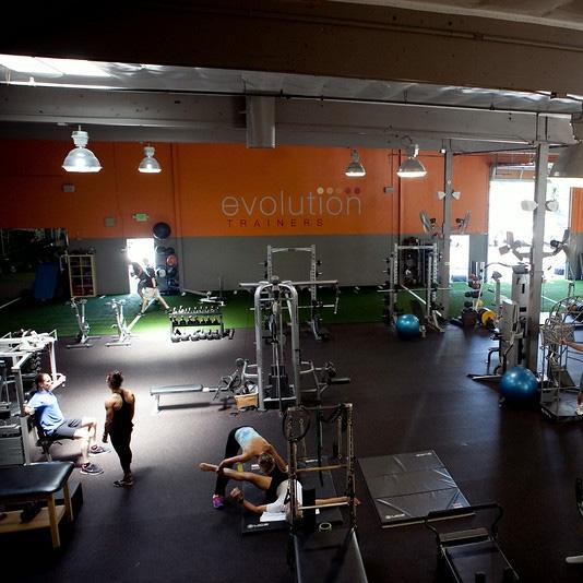 Evolution Trainers -