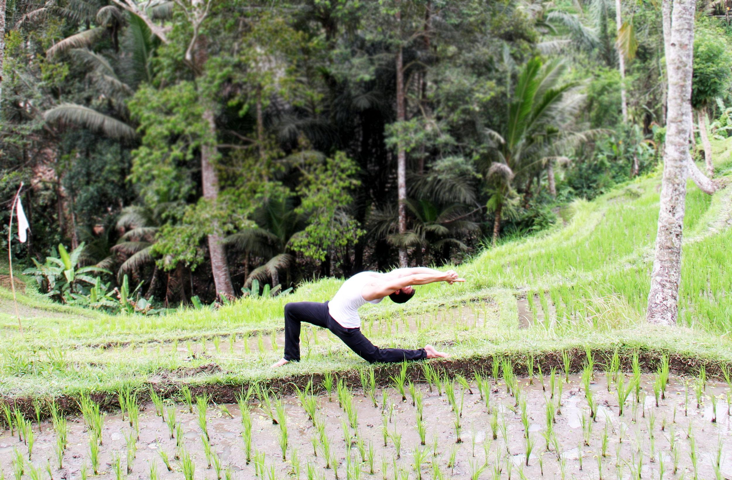 Kapilyasana 2 - Rice Fields.jpg