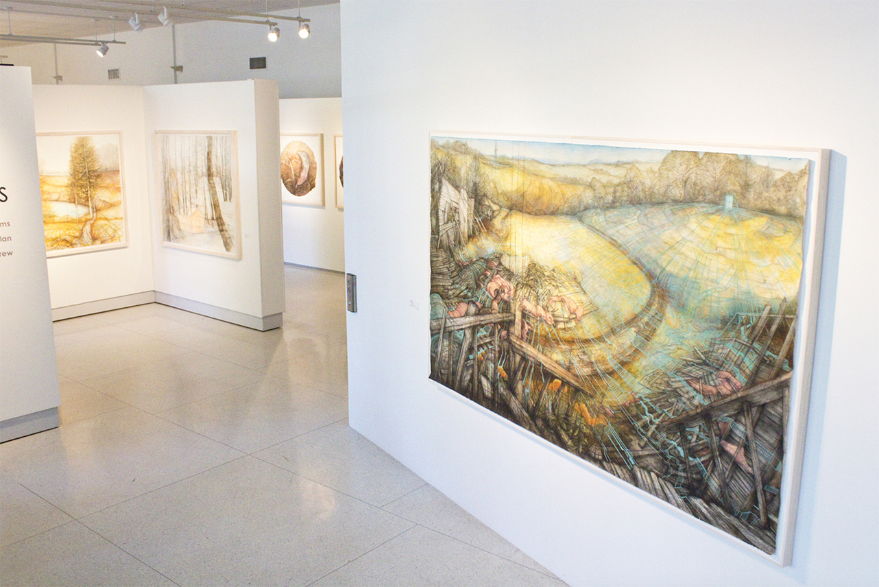 """Carly Drew, """"Will + Testament"""" (Gallery Installation).  Paper, watercolor, graphite, charcoal, acrylic, pastel. 55 x 84in. 2013.    Available.      Inquire Here."""