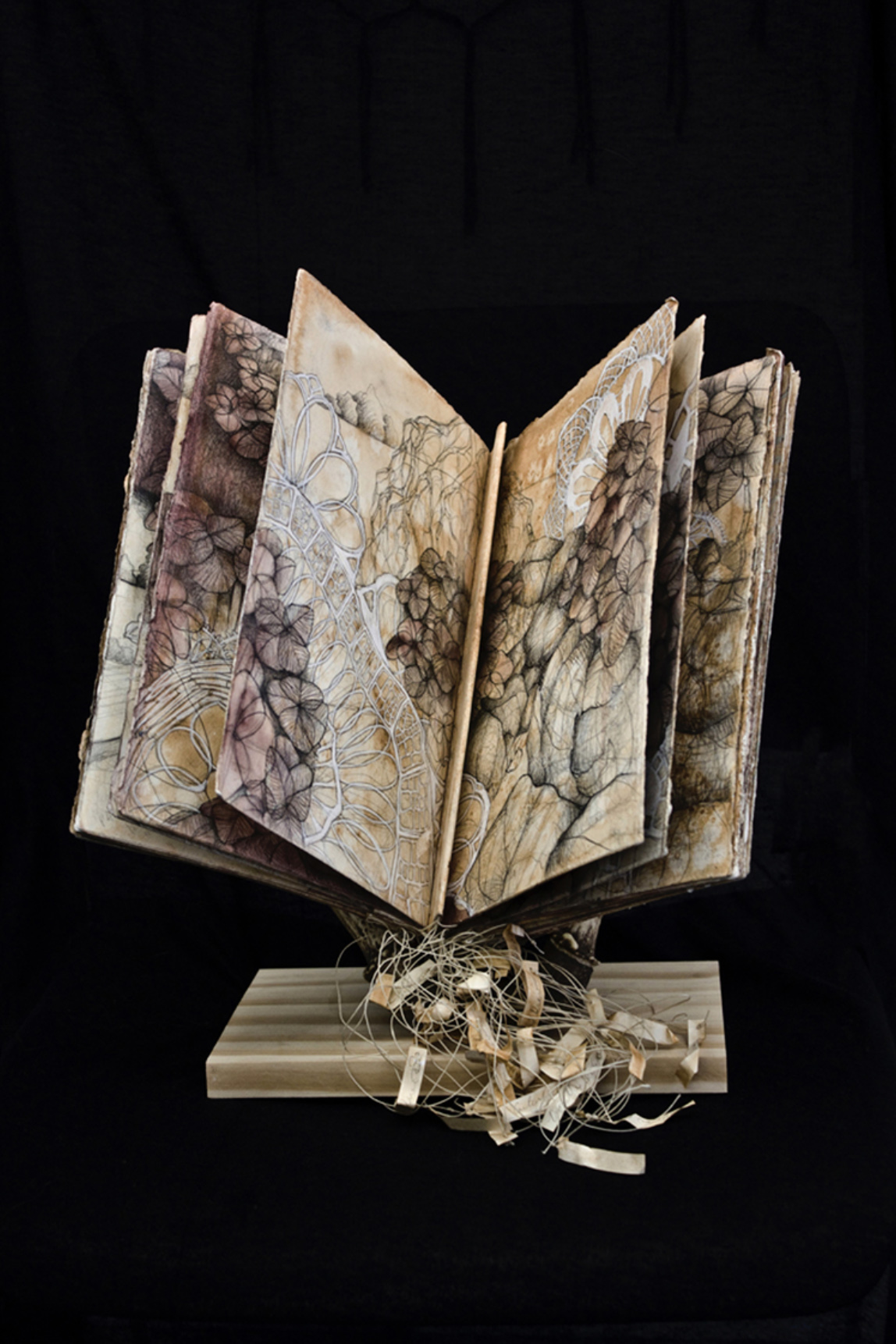 "Carly Drew, ""Hydrangea Book""   300lb. paper, watercolor, graphite, charcoal, acrylic, waxed linen thread, pine, antlers. 2012."