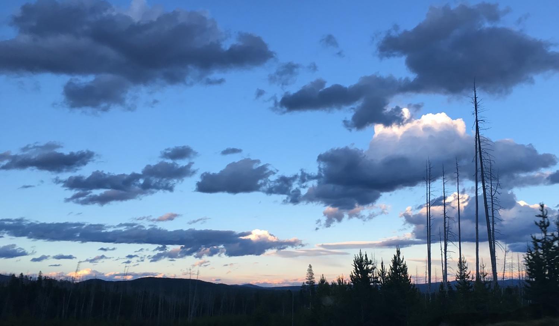 Carly_Drew_Yellowstone.jpg