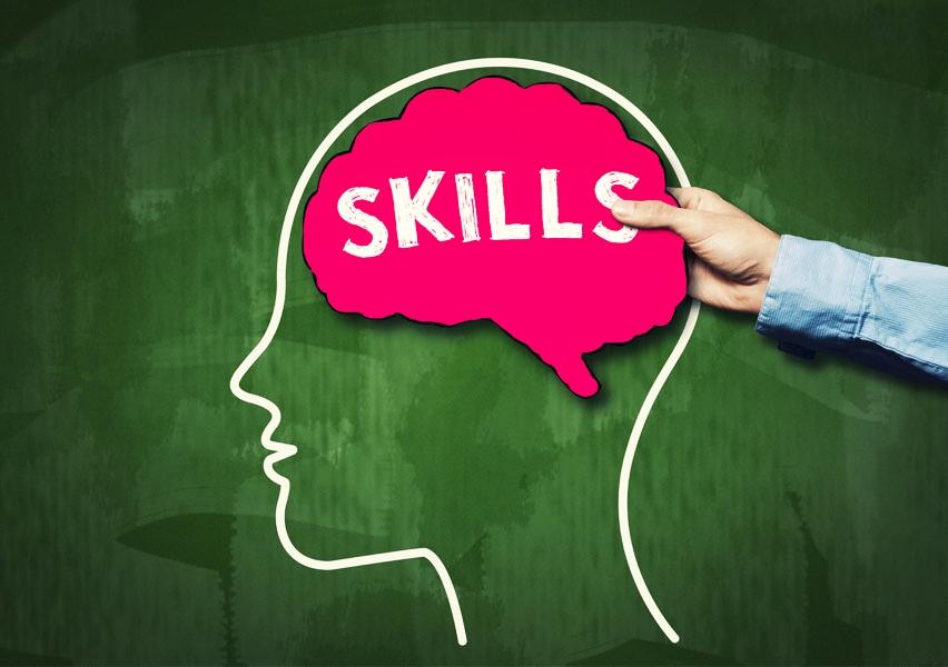 skillsbrain.small.jpg