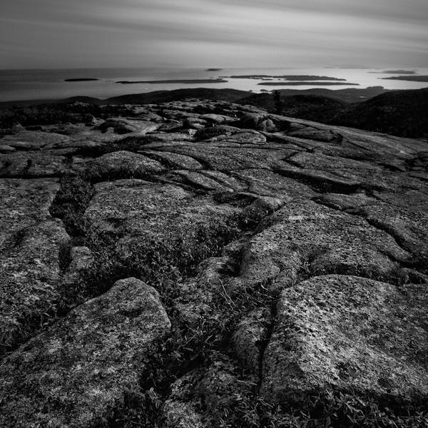rocky migration