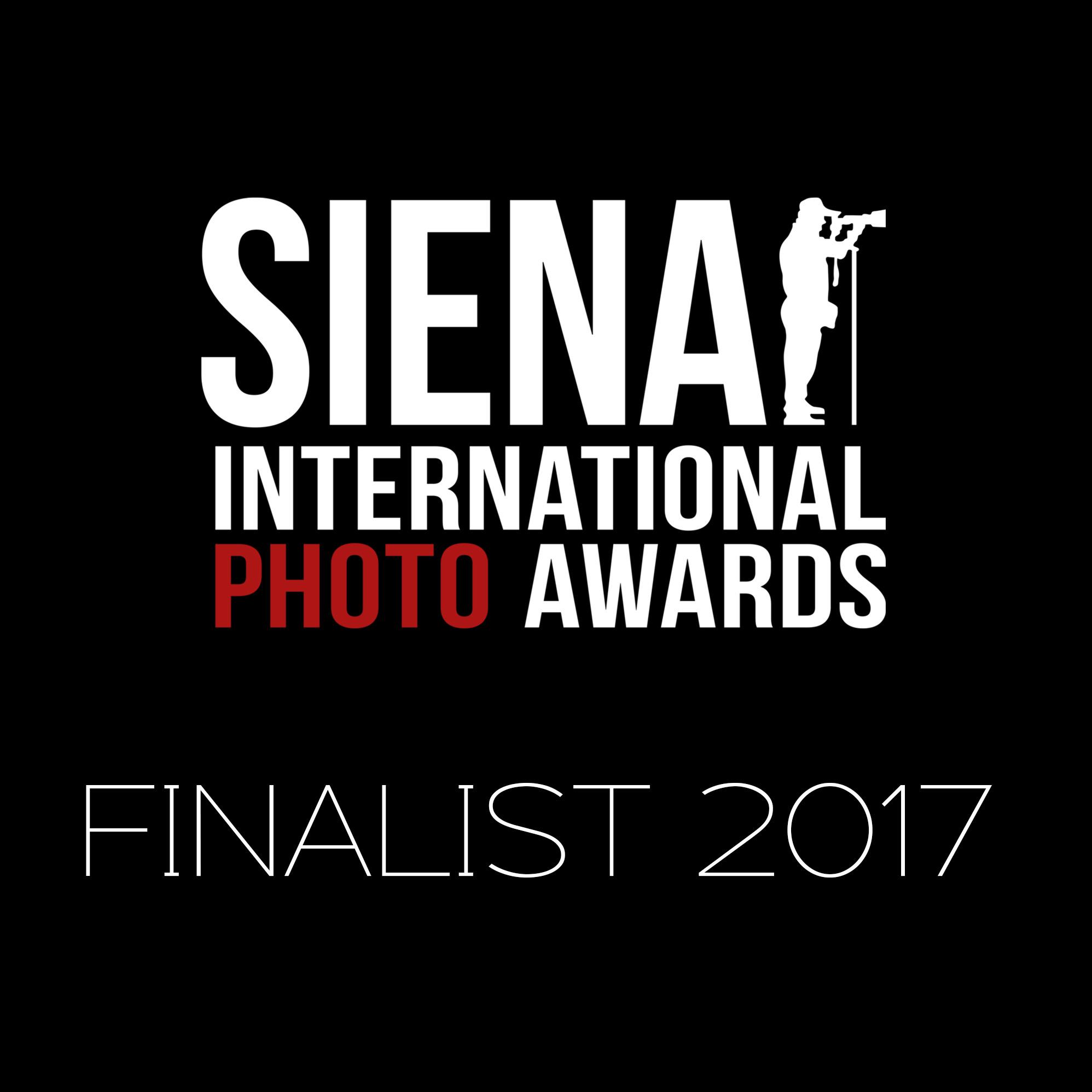 Finalist_Logo_2017.jpg