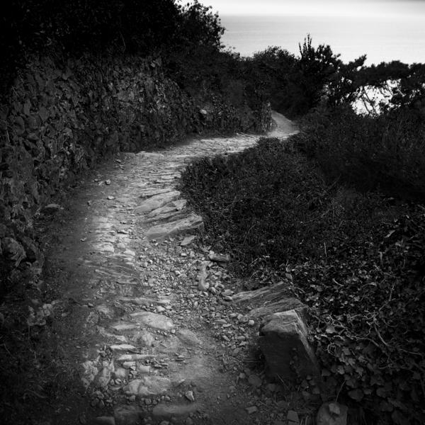 road to corniglia ii