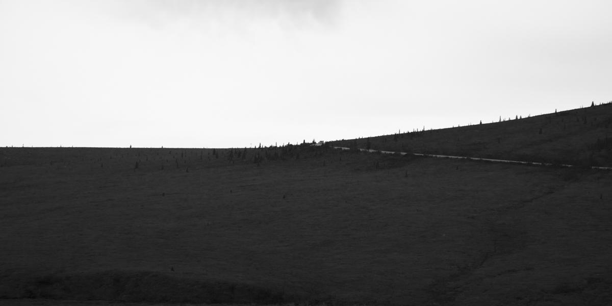 denali trail