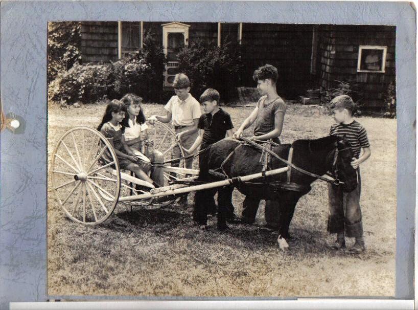 Betsy pulliing the cart, ca. 1943