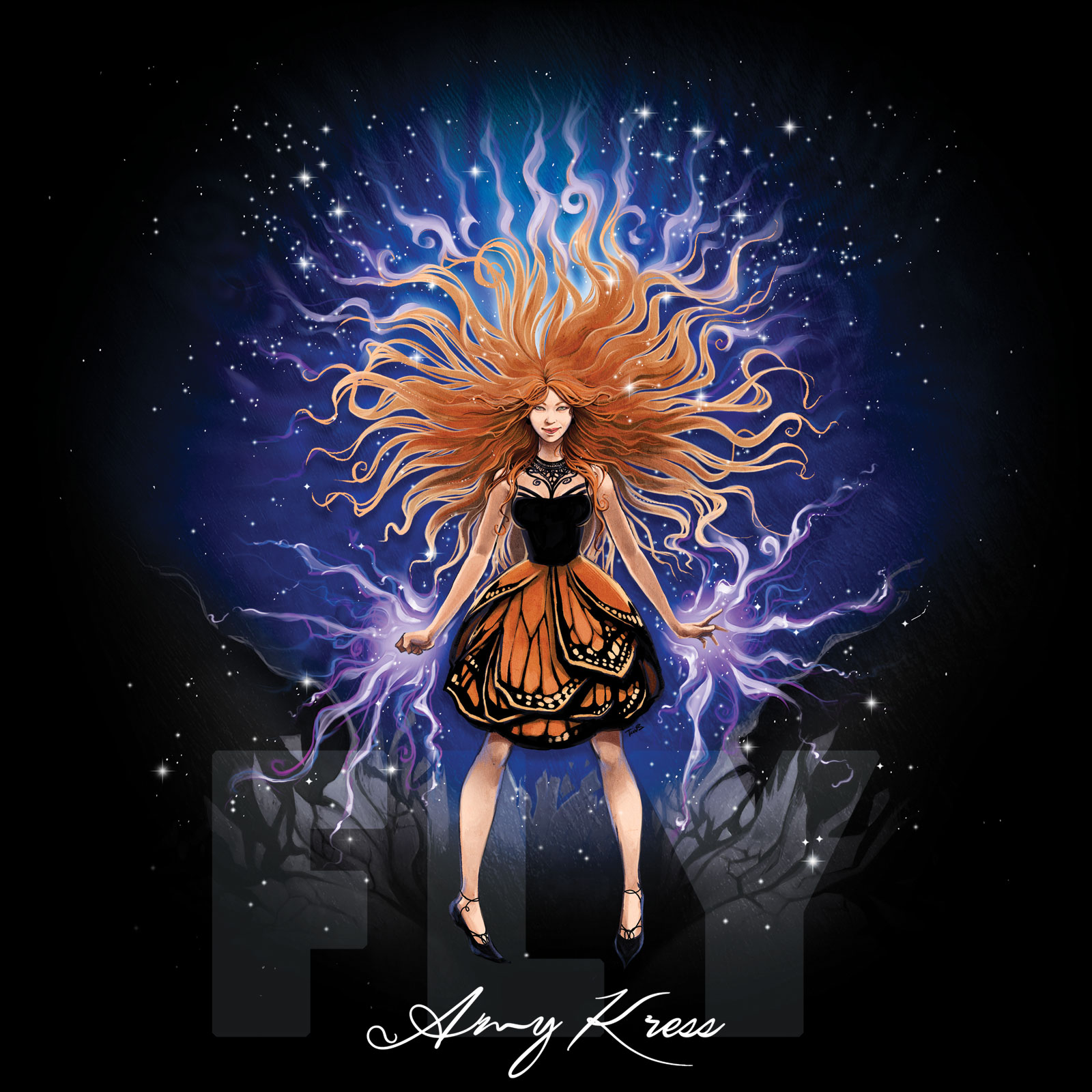 The album art from Amy Kress'  Fly .