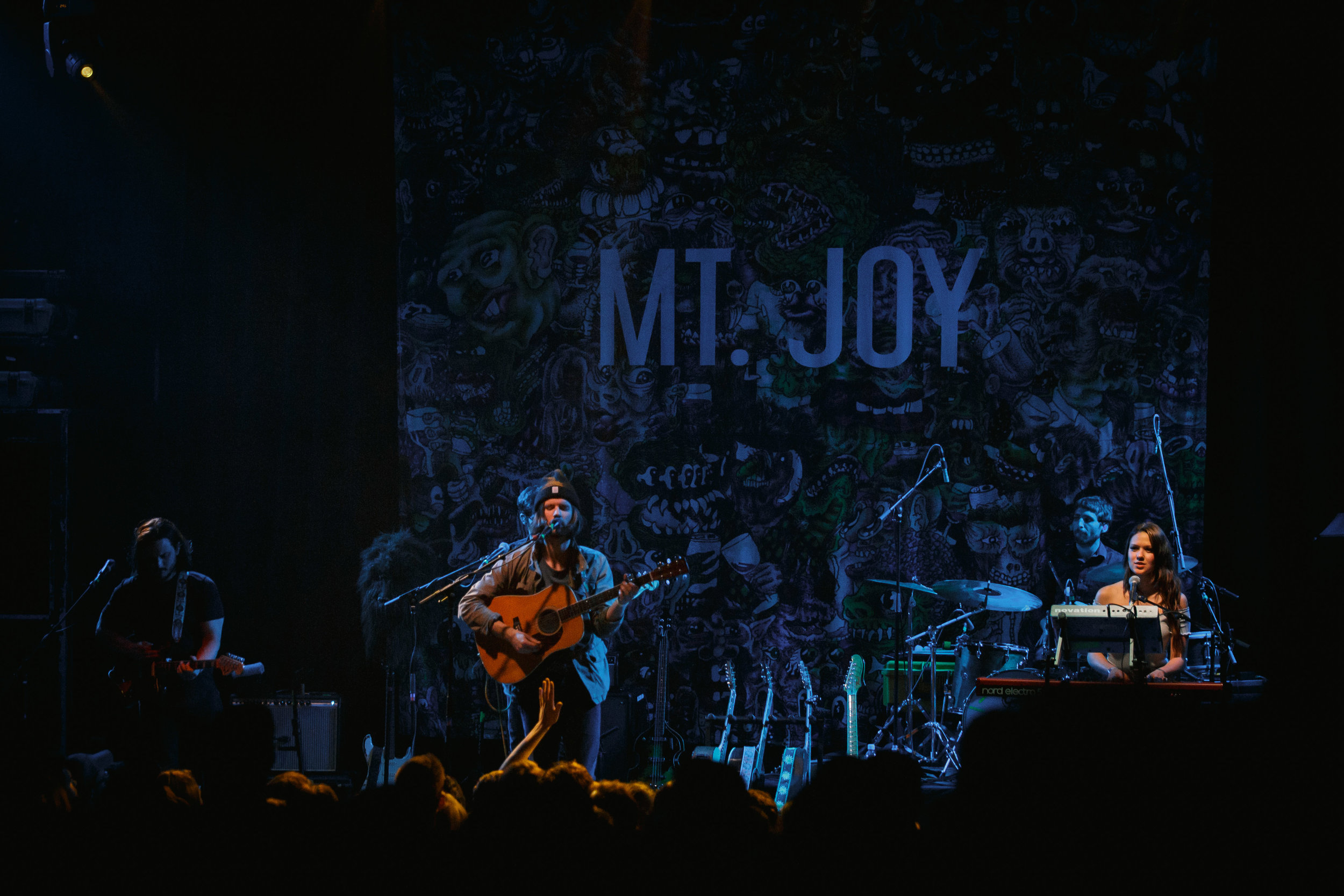 Mt. Joy.