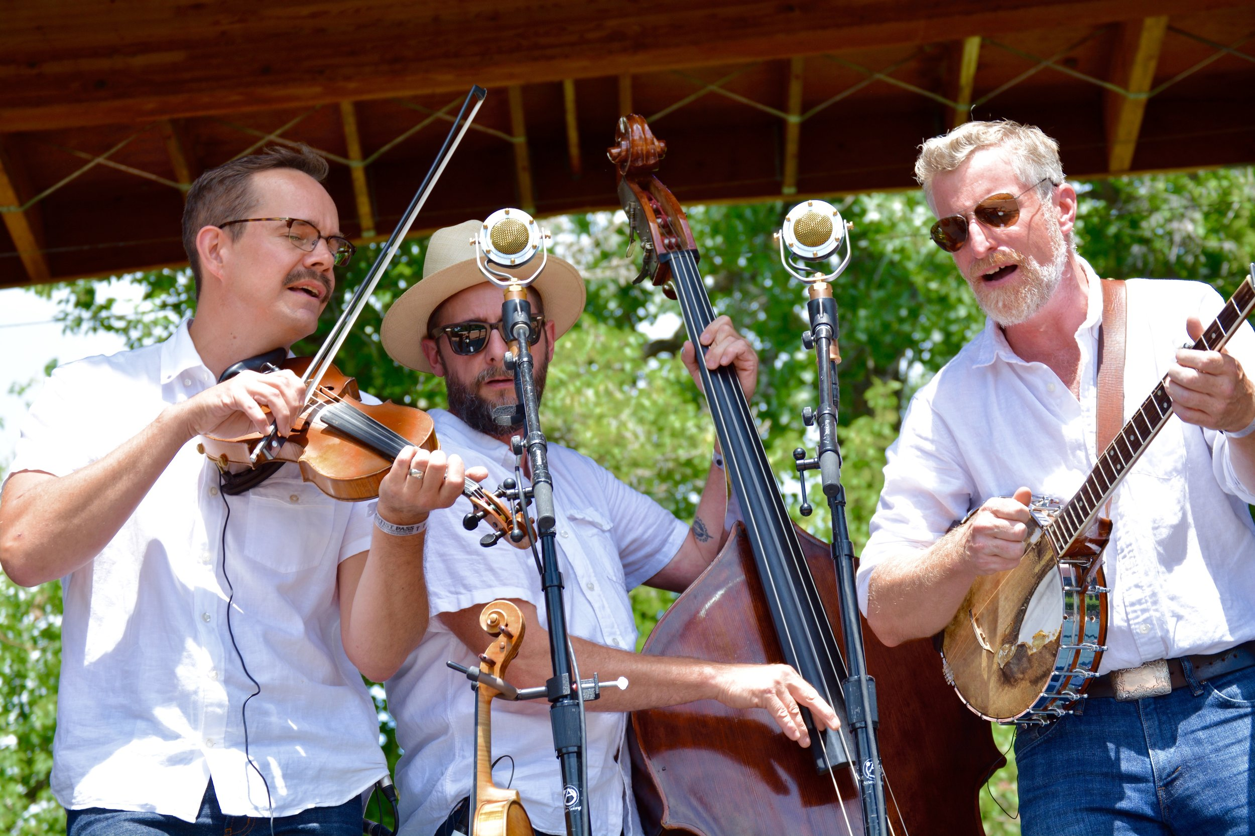 Lonesome Ace Stringband(1).jpg