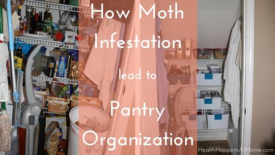 How moth infestation led to pantry organization