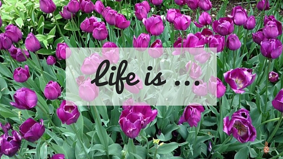 Life is ... a post about a crazy, beautiful life in process. Read now or pin for later. - Health Happens at Home