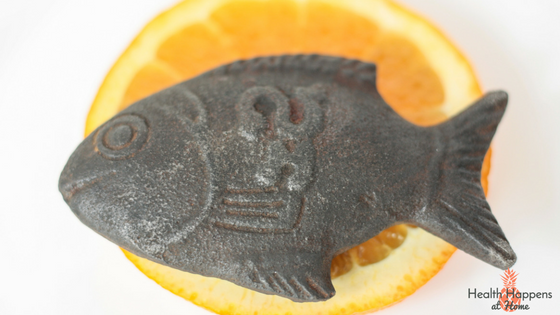 Lucky Iron Fish. An anemia prevention tool. Read more here or pin for later. - Health Happens at Home