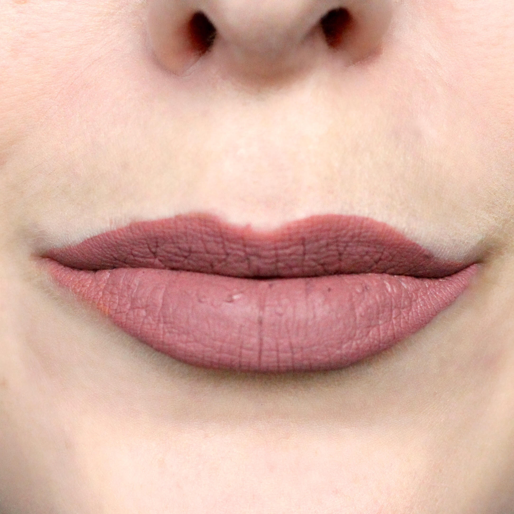 Make Up For Ever Artist Liquid Matte Lipstick in 105.