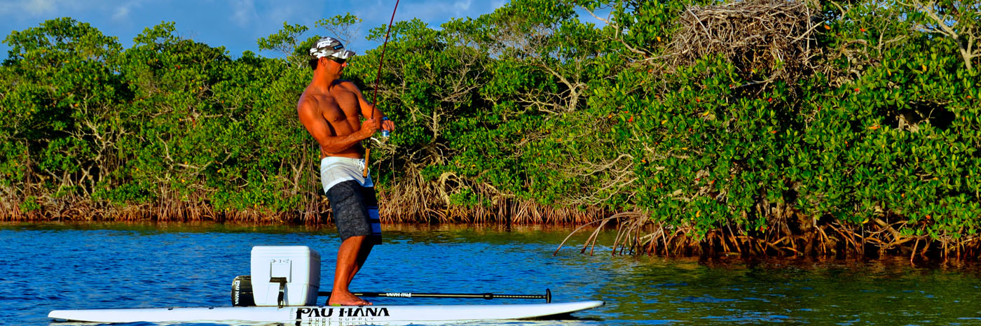 Love to fish? Use our fishing pole holder when you rent a paddle board and take your SUP experience to a whole new level!