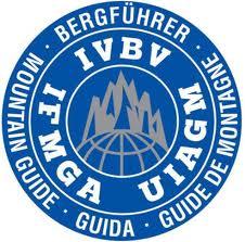 logo guide alpine.jpg