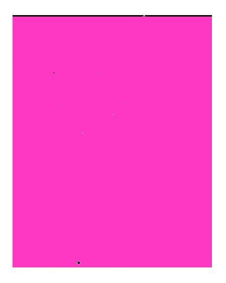 pme logo pink.png