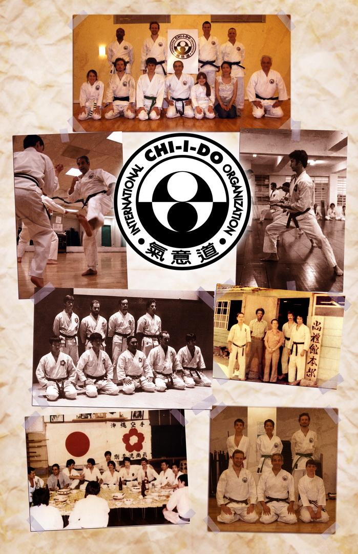 Karate Collage_resize.jpg