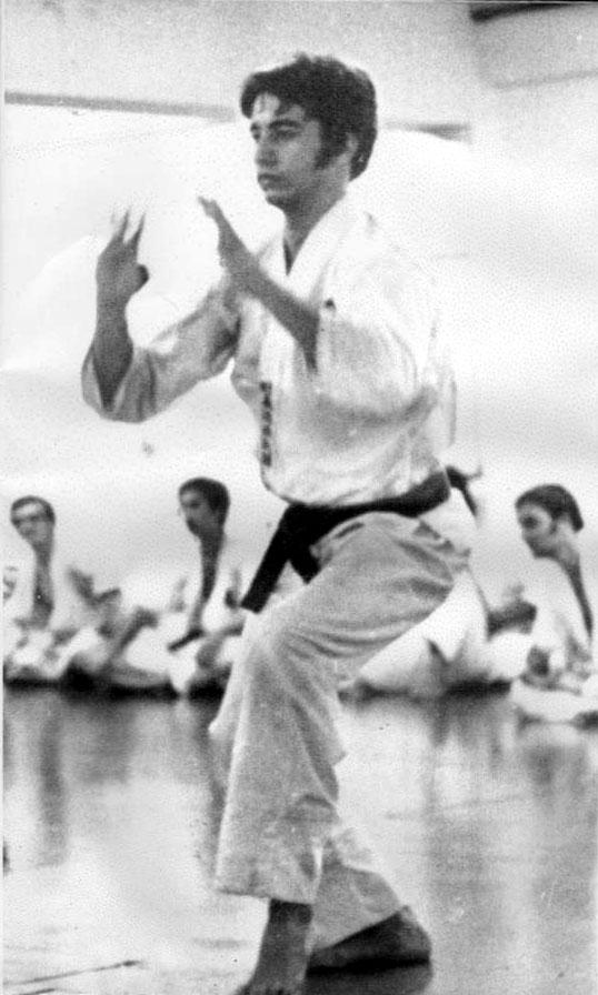 Karate_Gusi_Seiyunchin.jpg