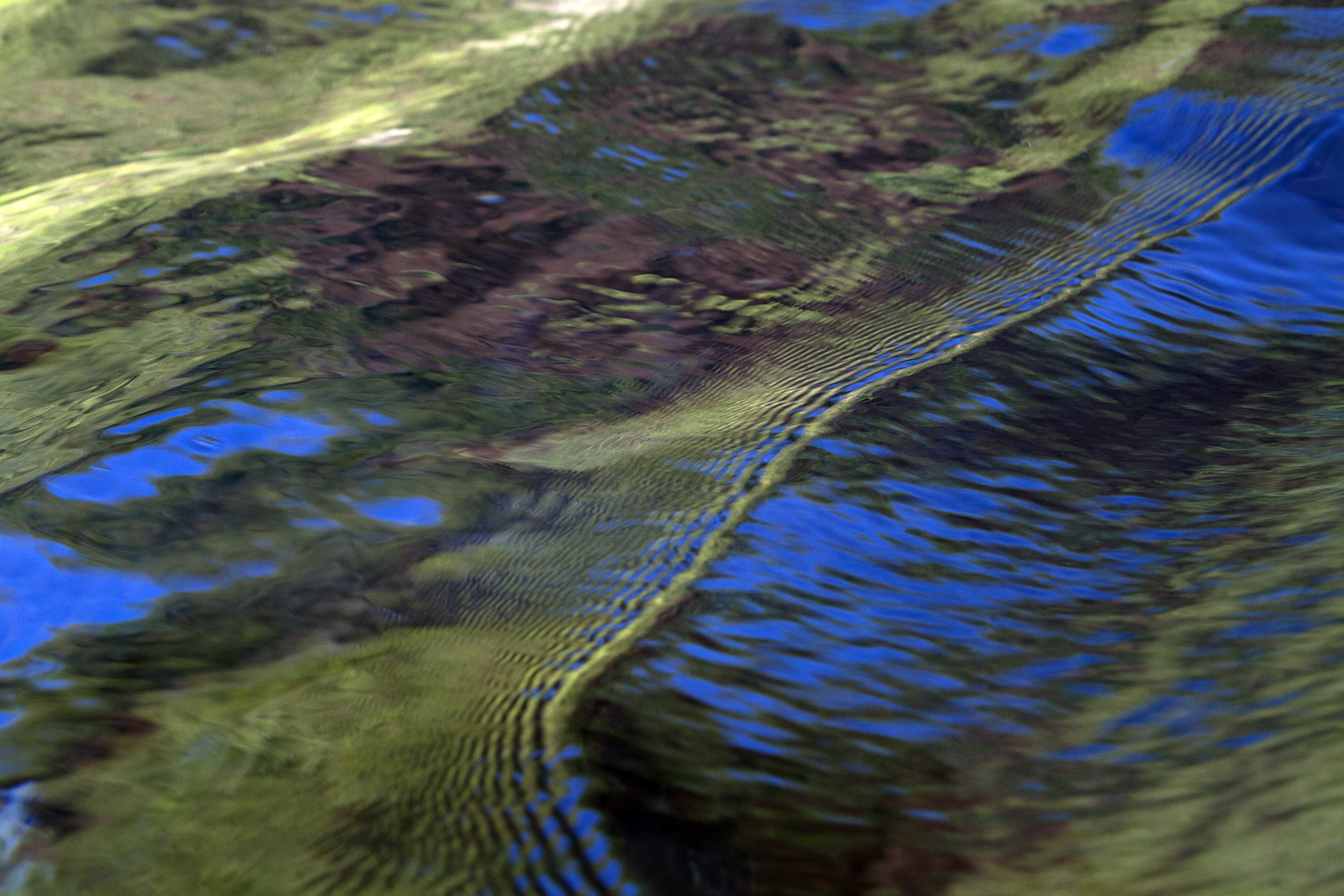 Reflection of Land