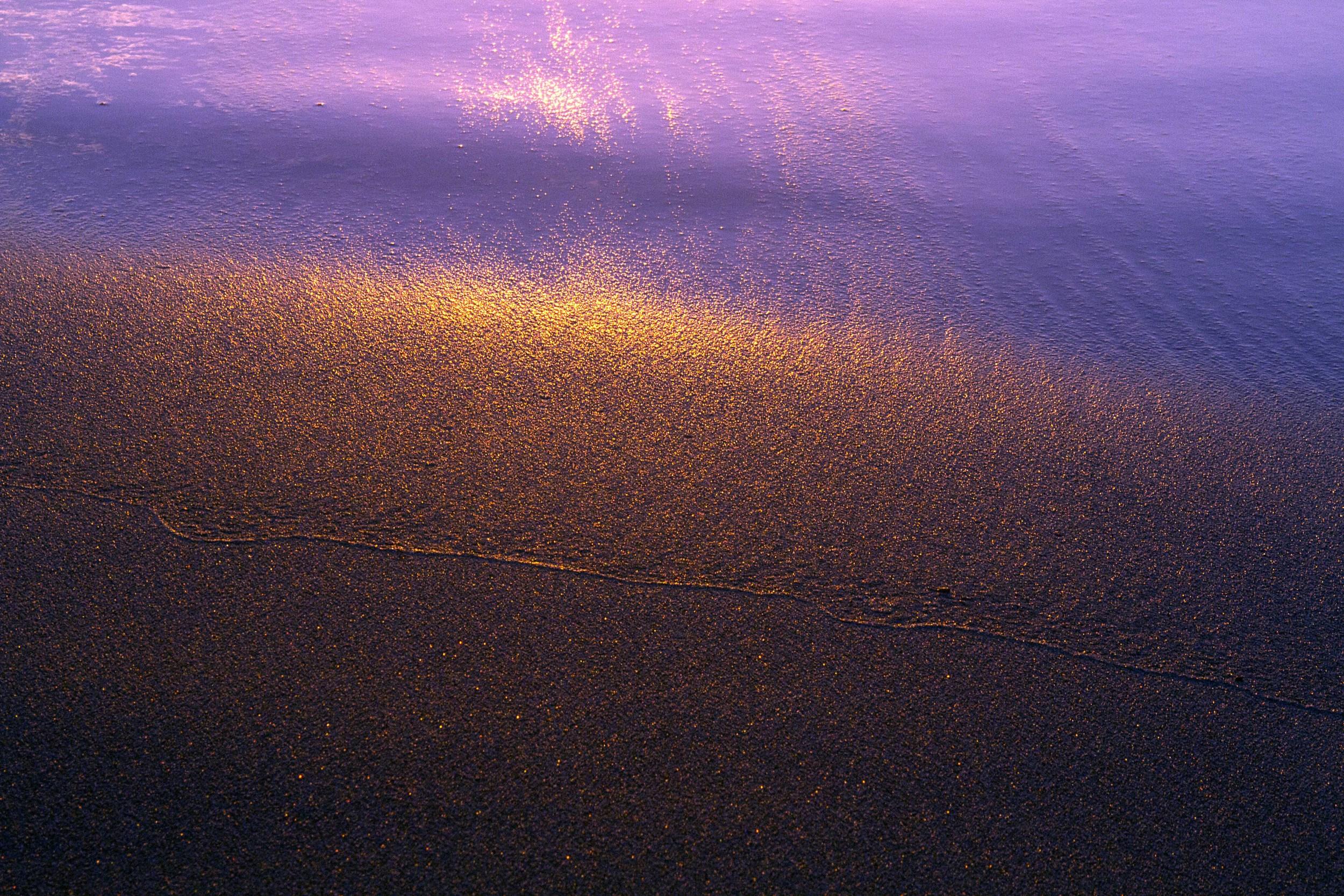 Purple Evening (LE)
