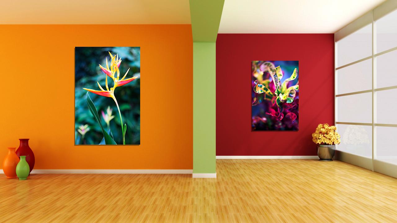 walls_design_room_pot_pots_80712_1280x720.jpg