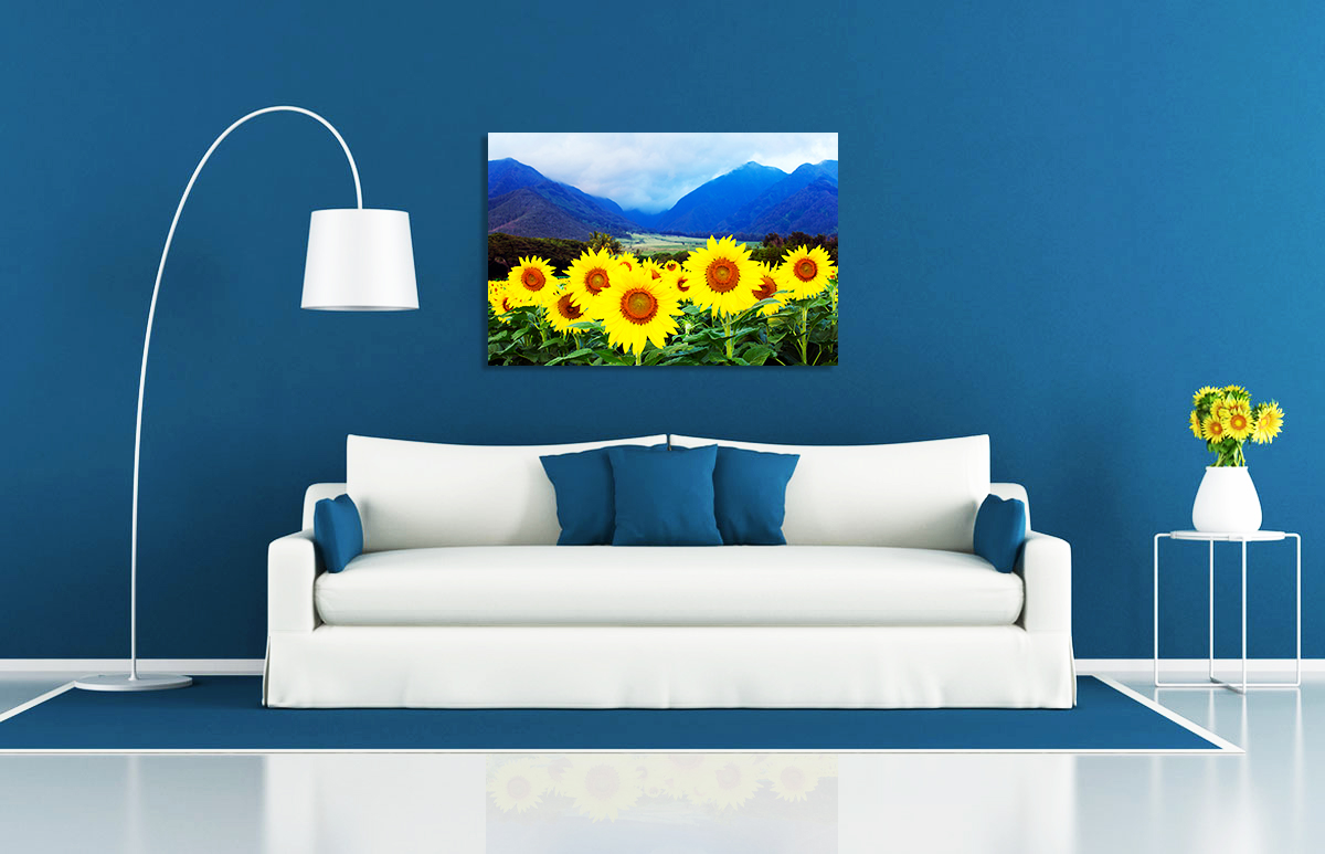 sunflowervalley.jpg