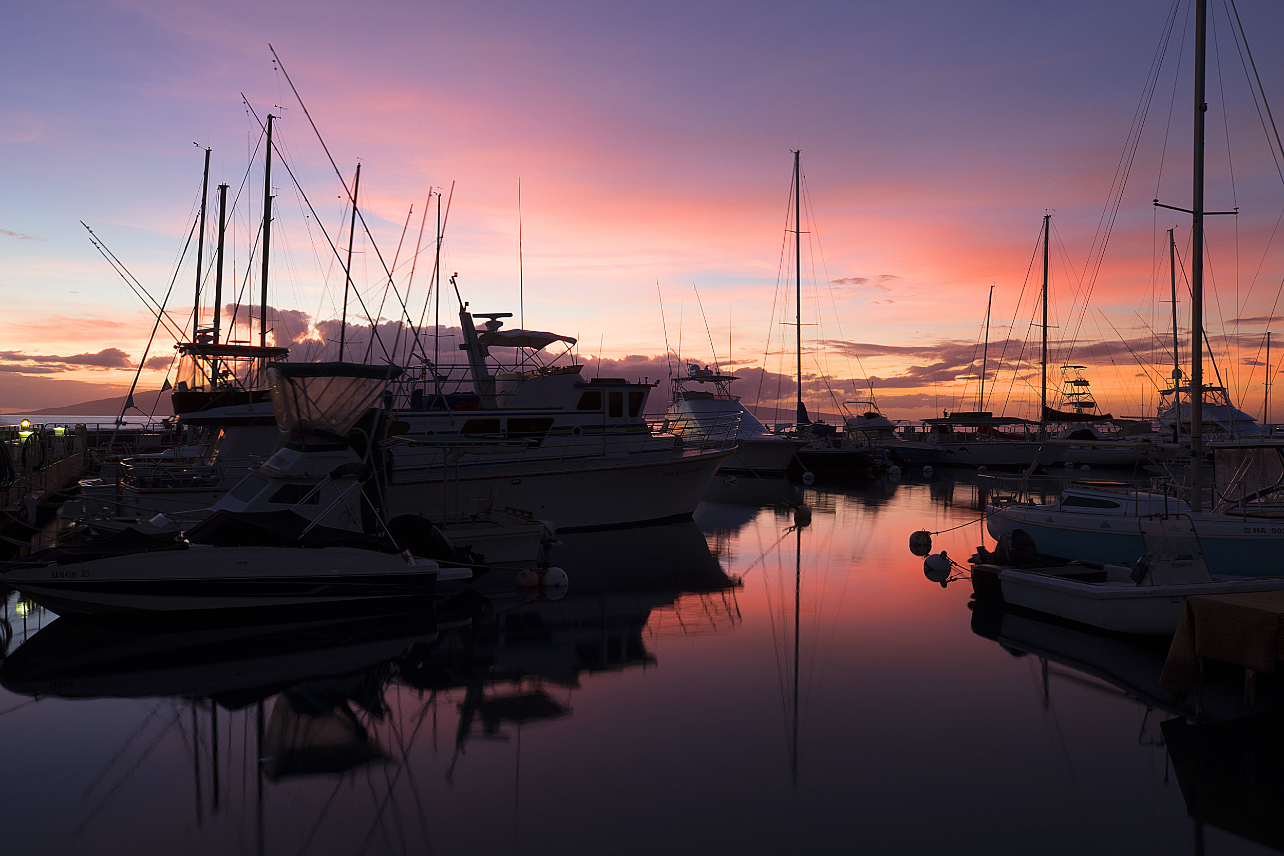 Harbor Twilight
