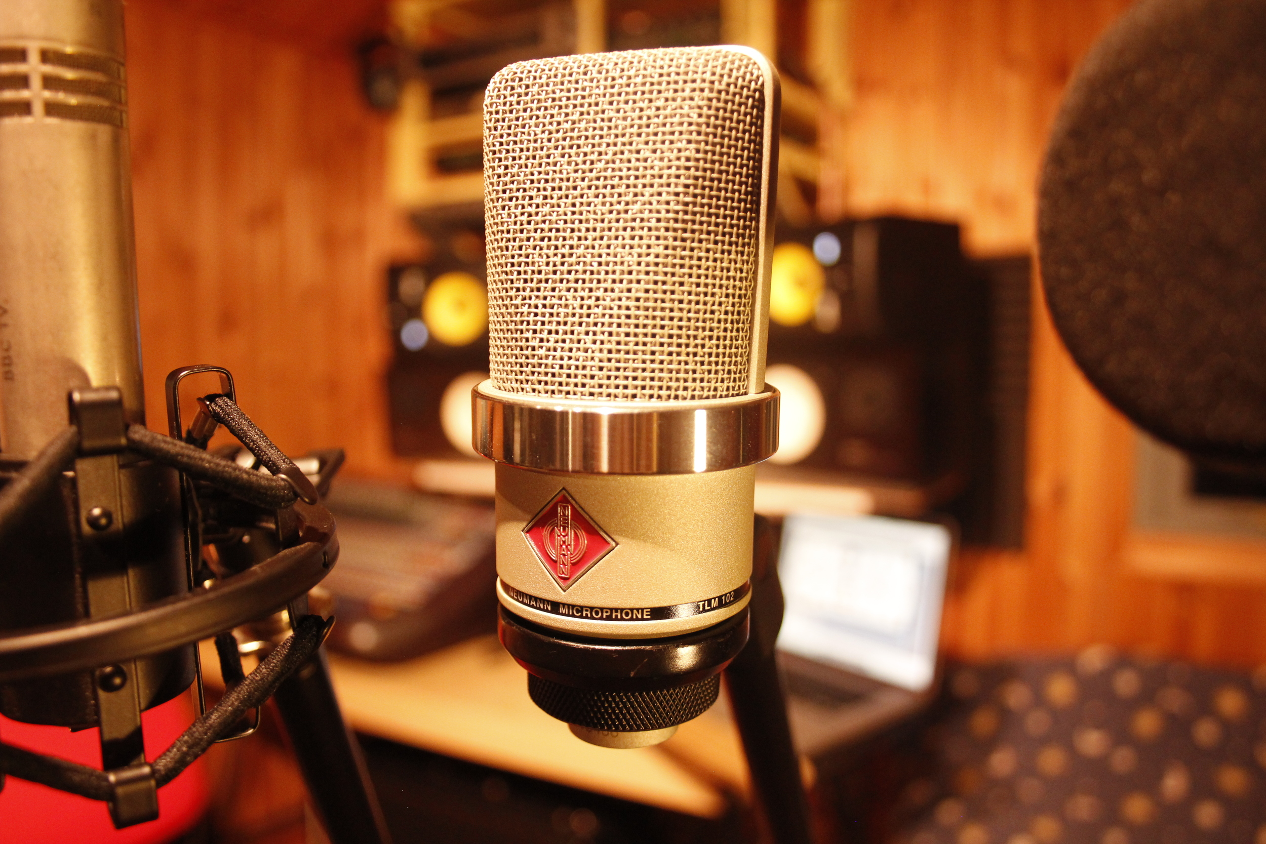 Neumann tlm102. My prefered voice over mic. So quiet.