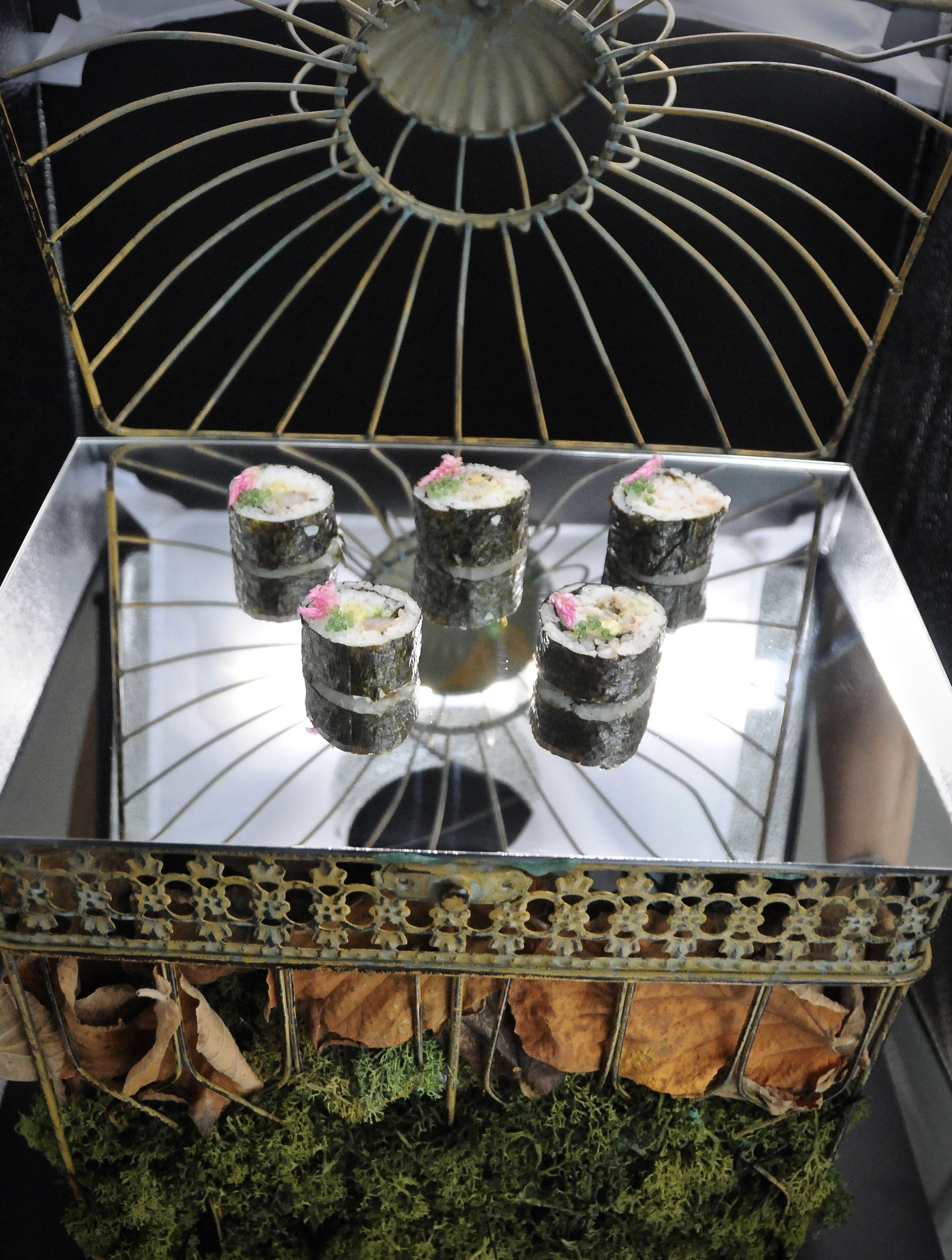 Sushi on a mirror on a bird cage