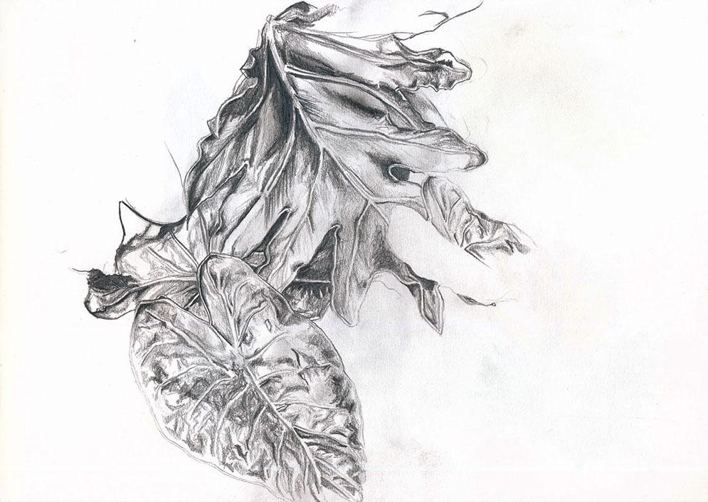 Pencil on paper (Sketchbook).