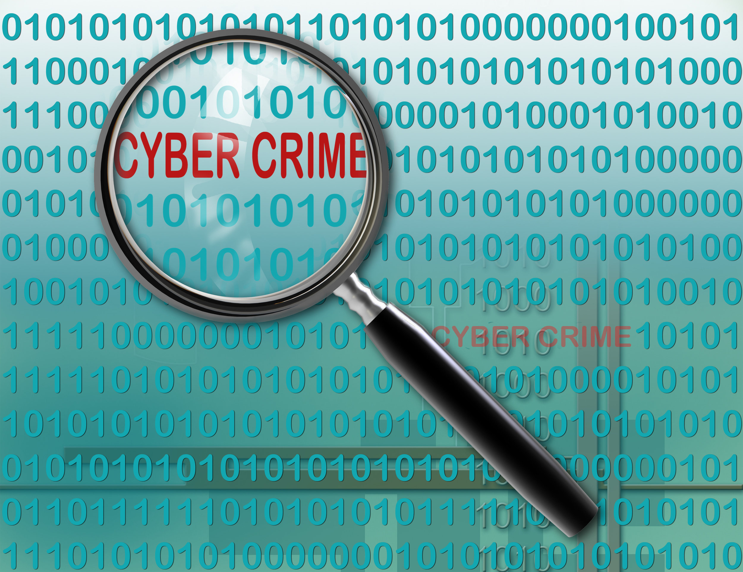 Working in the Cyber Crime Scene