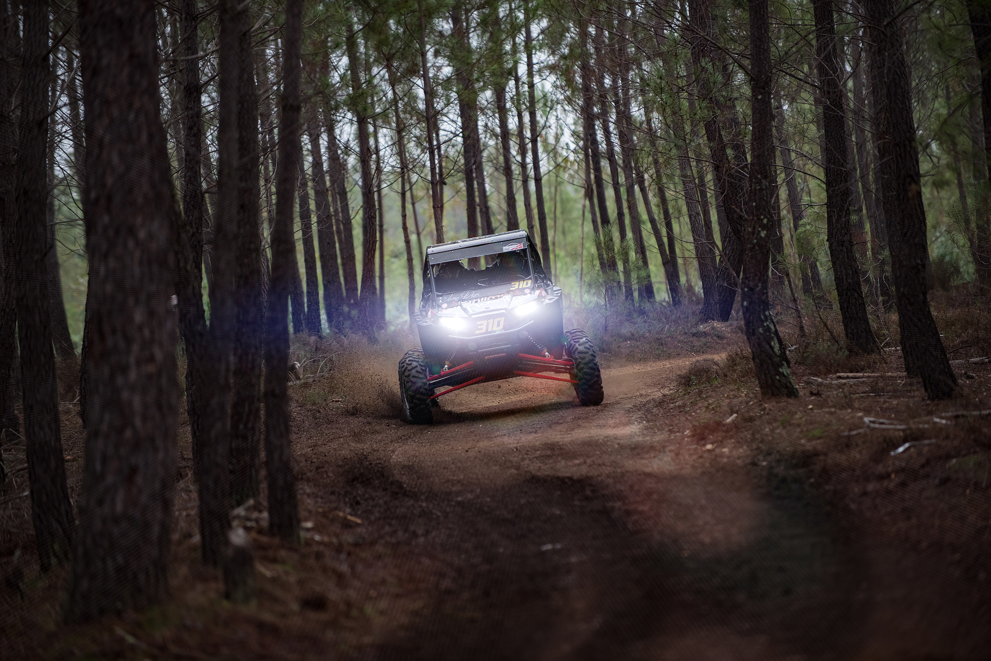 "João Dias and João Filipe Miranda won on a  Polaris RZR XP 1000 ""UTV/Buggy"" at BAJA 500 Portalegre 2015, here crossing a beautiful pine crossroad."