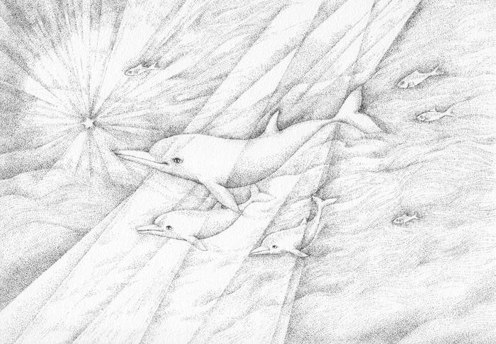Art by Motai Works:  http://www.motaiworks.com