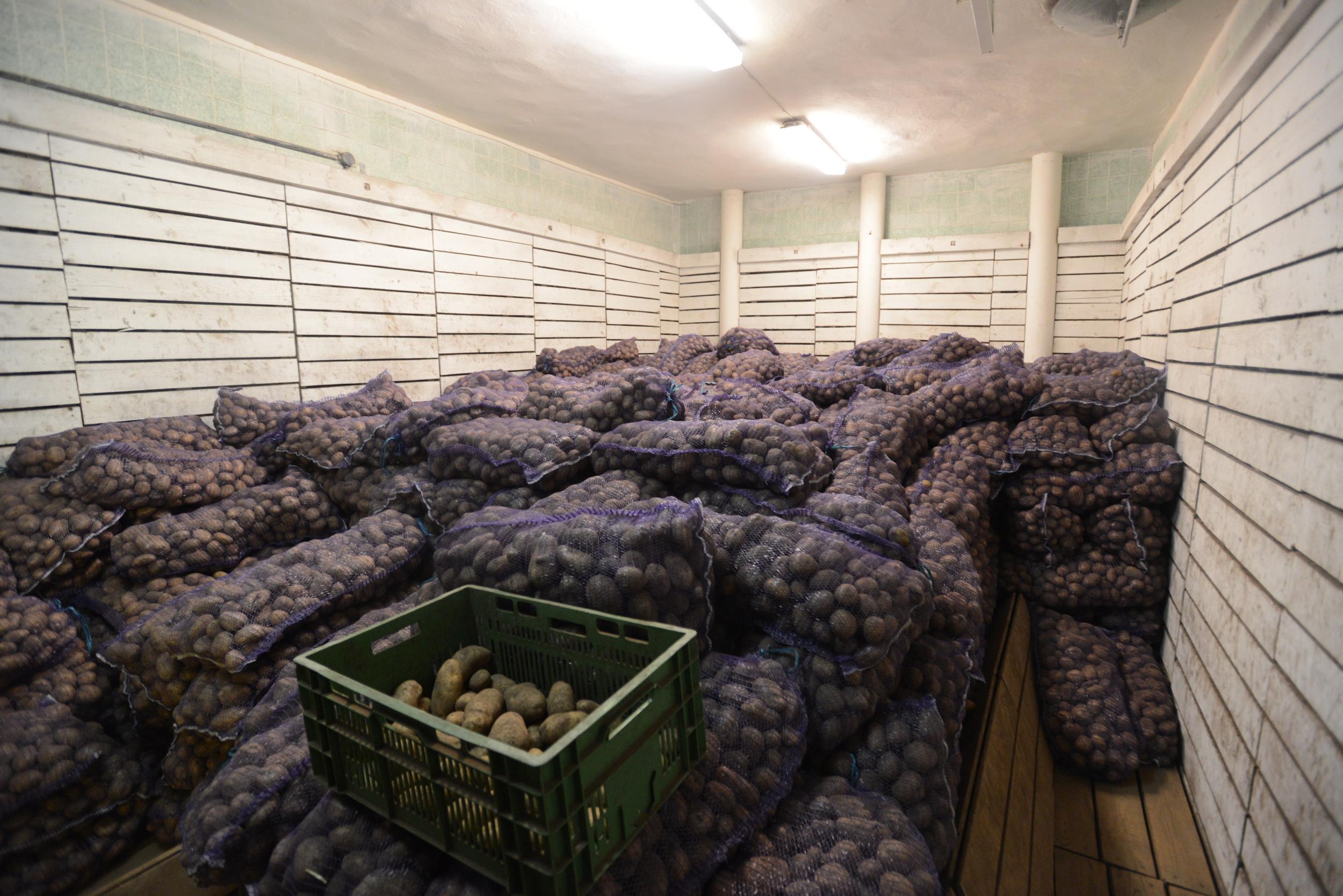 センターで収穫されたポテト。ベラルーシはポテトが主食。必ず毎食ポテトは使われていた。
